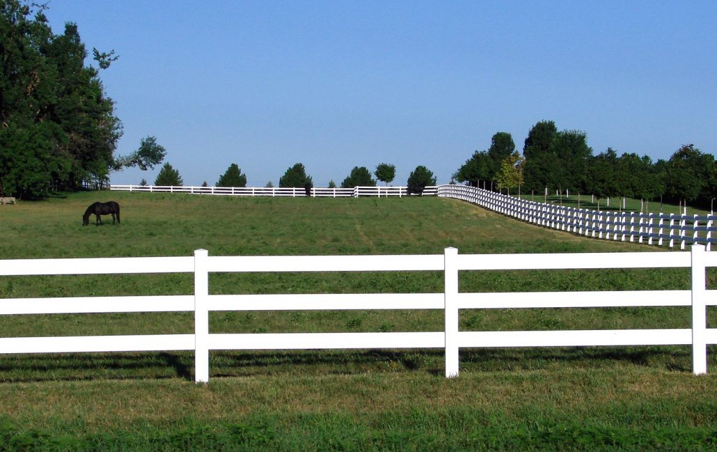 Horse Fencing and Your Farm: Part 1 [The Two Most Common